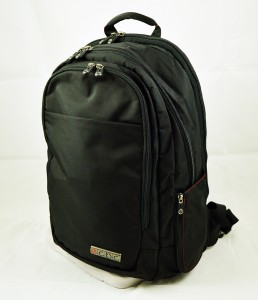 Lance Executive Daypack